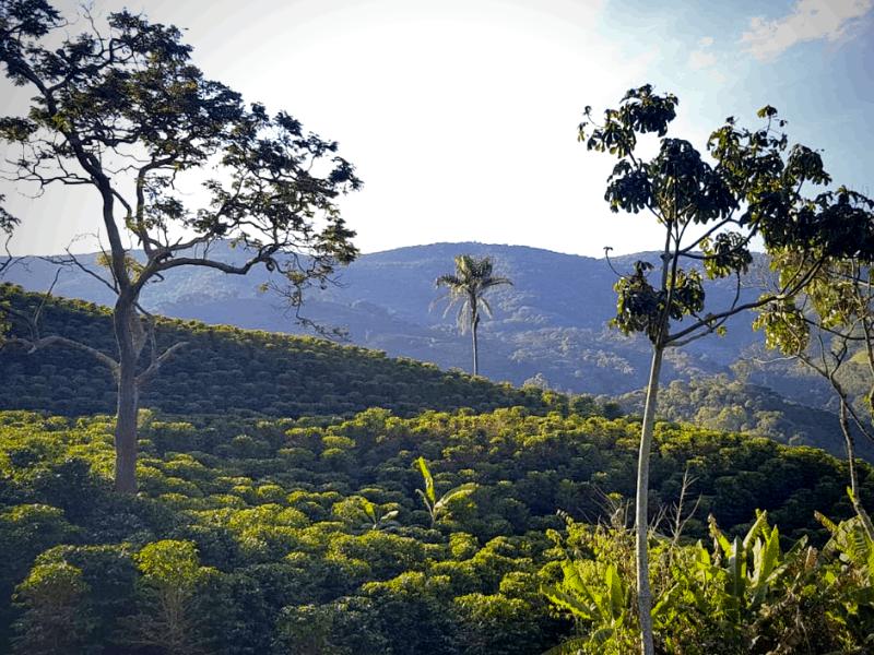 pohľad na okolité kopce