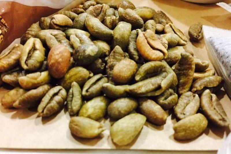 zelené kávové zrná druhu Liberica