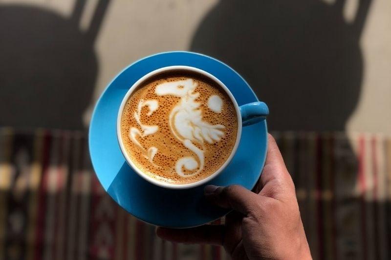 obrázok morského koníka v káve