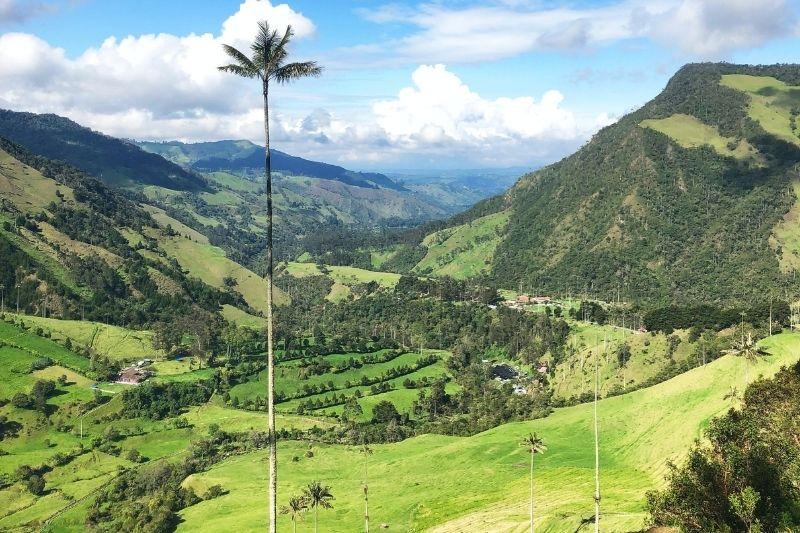 pohľad zhora na údolie Cocora v Kolumbii