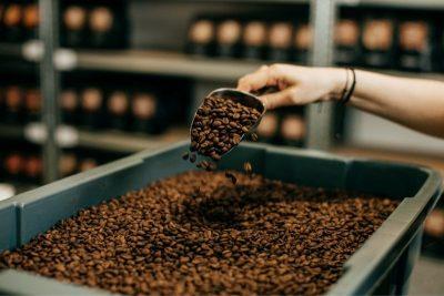 čerstvo pražené kávové zrná v baliarni