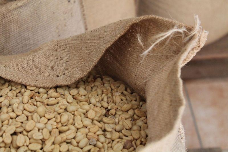 zelená káva v otvorenom jutovom vreci