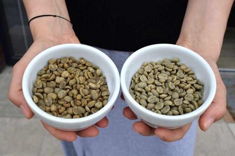 zrnká zelenej kávy v miskách
